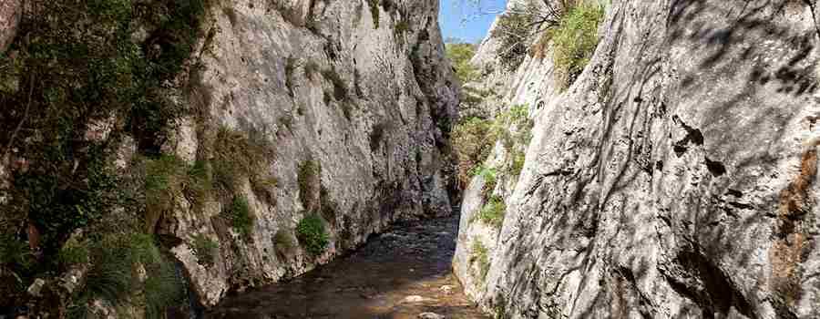 Las Palancas y la cueva del Piscarciano