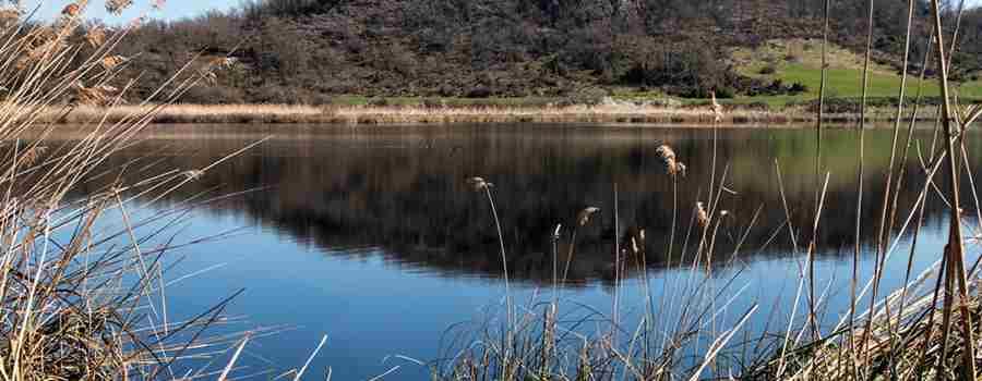 Lagunas de Antuzanos, entre aves y leyendas